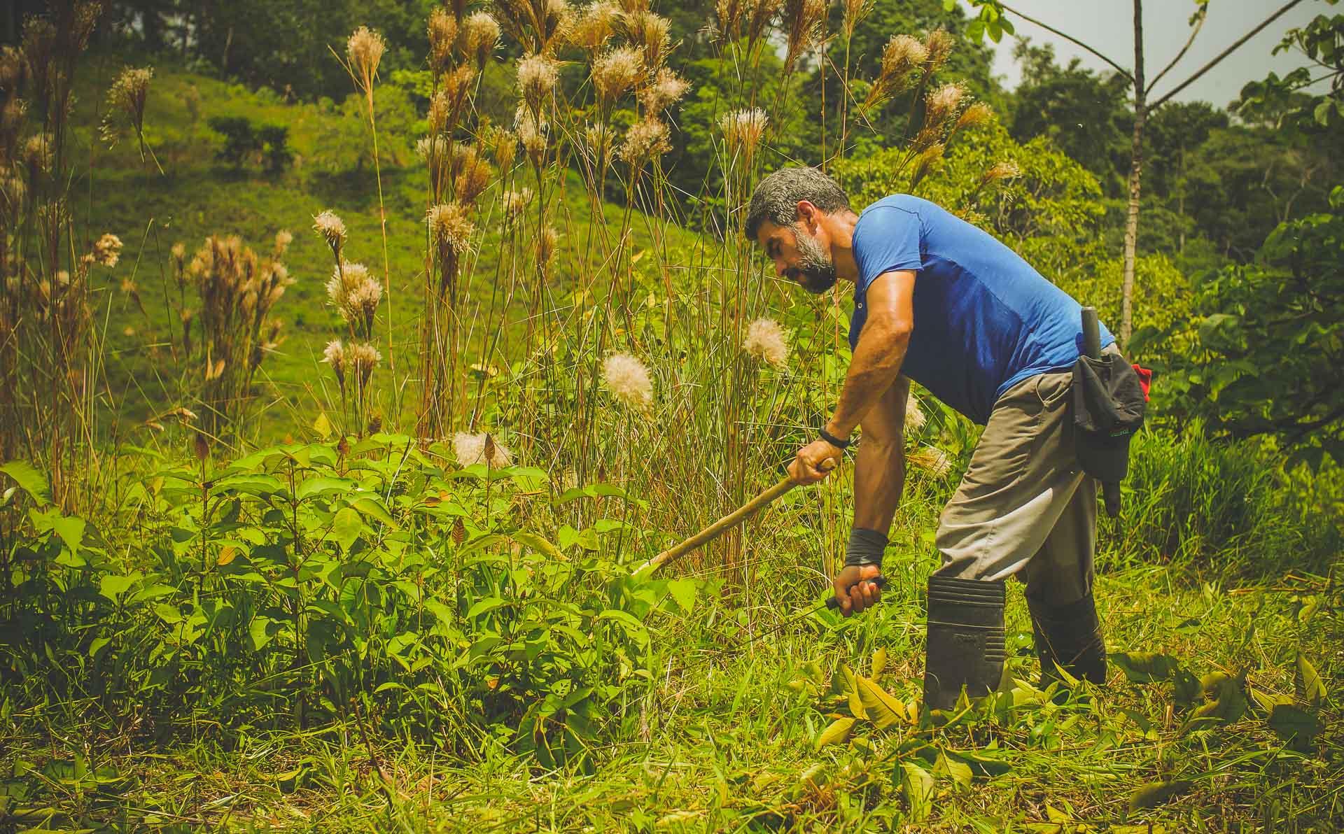 Roger cutting grass