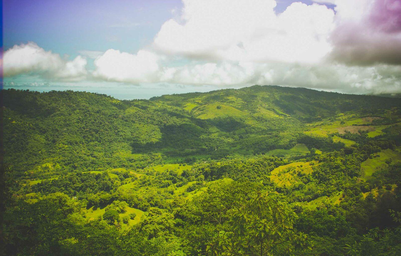 clouds jungle costa rica