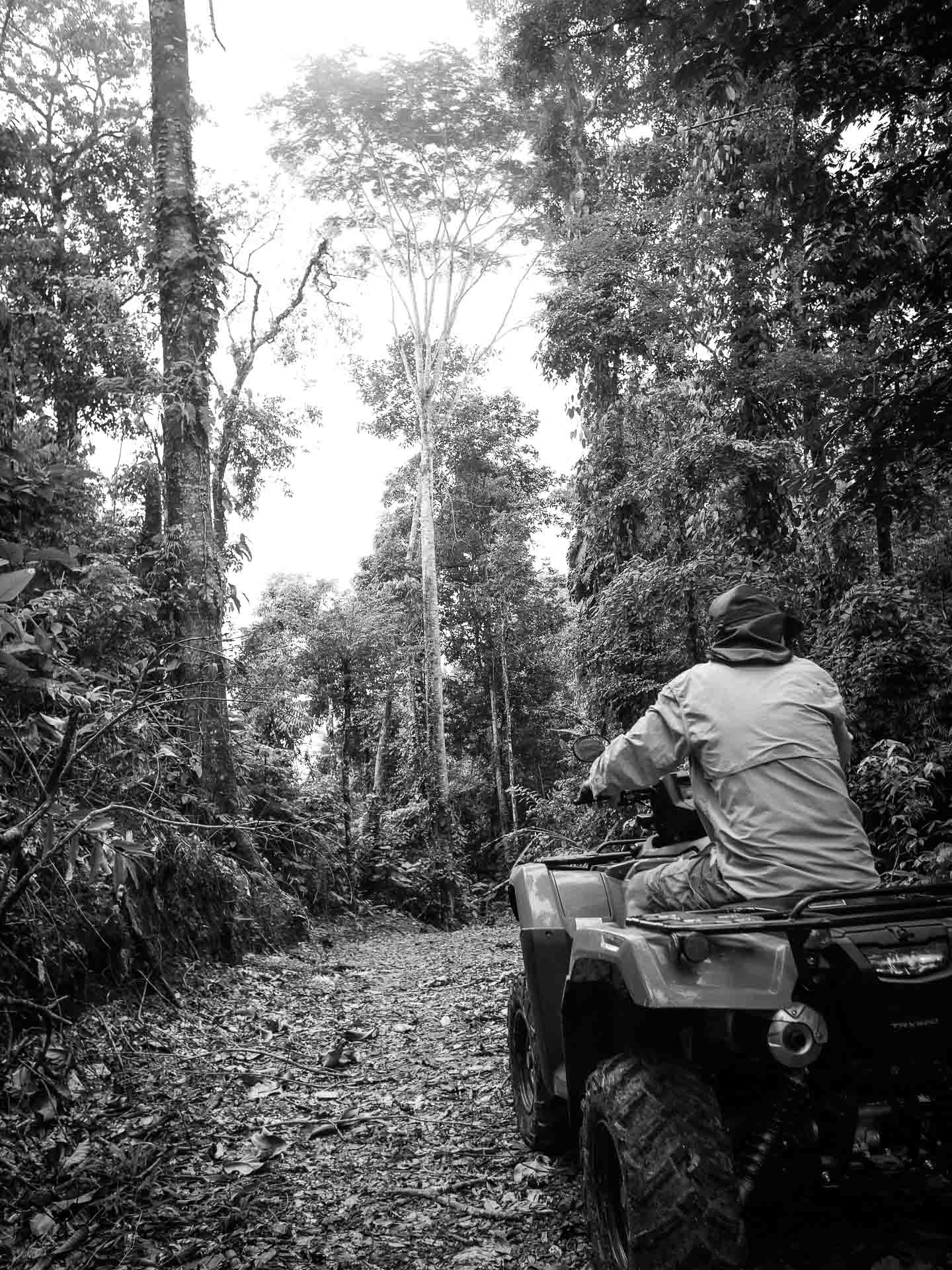 quad in jungle of costa rica