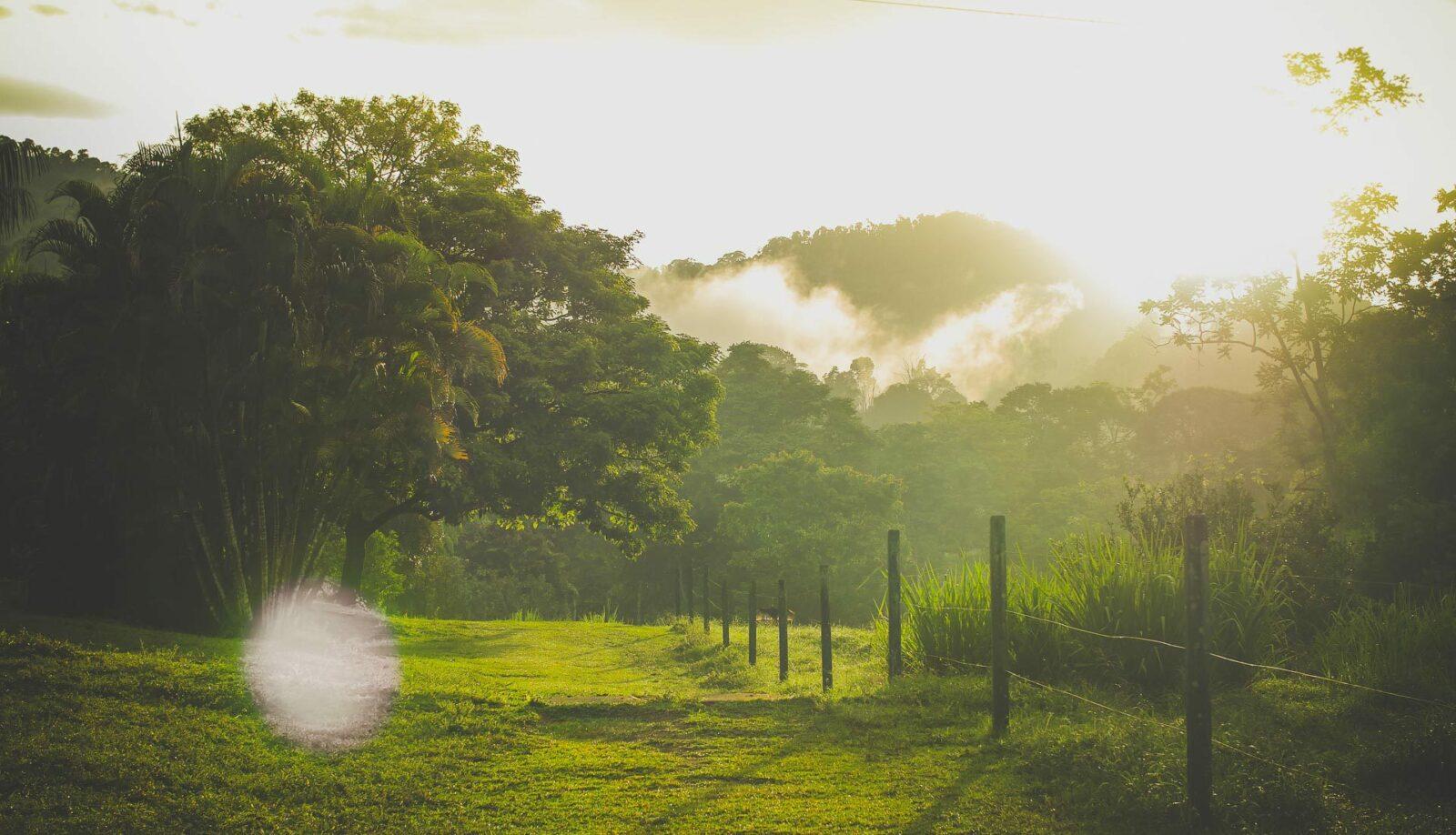 sundown in farm costa rica