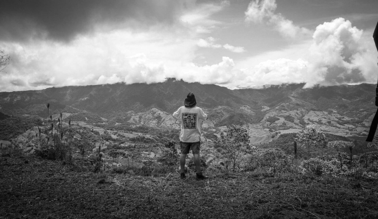 b/w photo costa rica jungle
