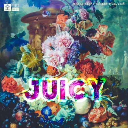 Juicy House Mixtape