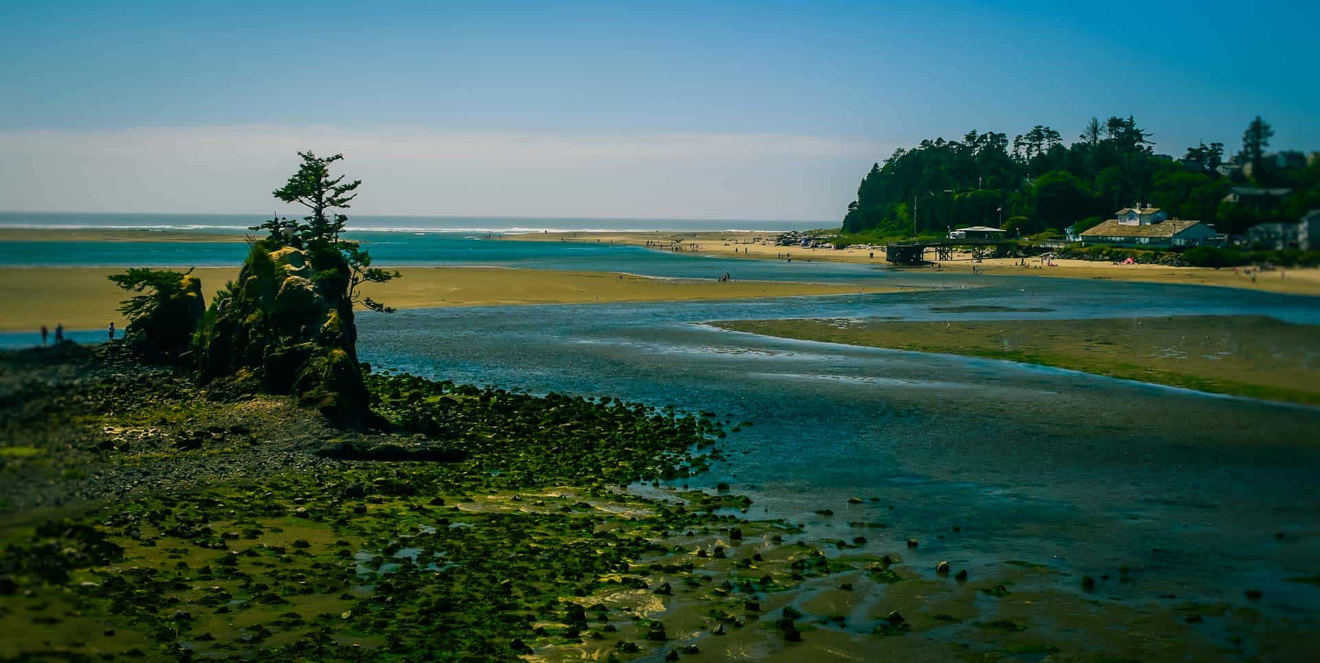 Oregon Lincoln City Photography
