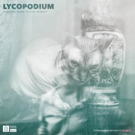 Lycopodium Homeopathic Remedy DJ Mixtape Baja California Consulting