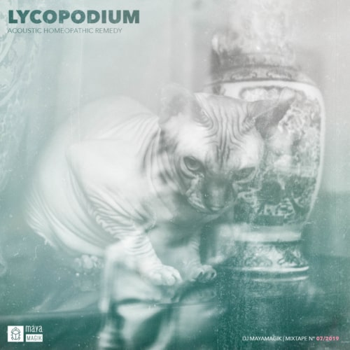 Lycopodium Homeopathic Remedy DJ Mixtape Baja California Consulting